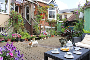 bed and breakfast Tunbridge Wells